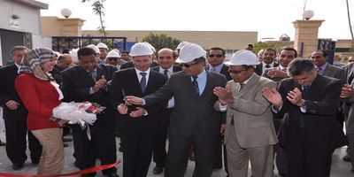joint venture egypt
